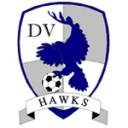dv-hawks